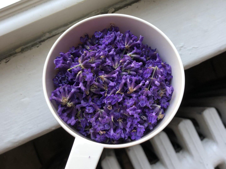 Lavender Gimlet & Rickey
